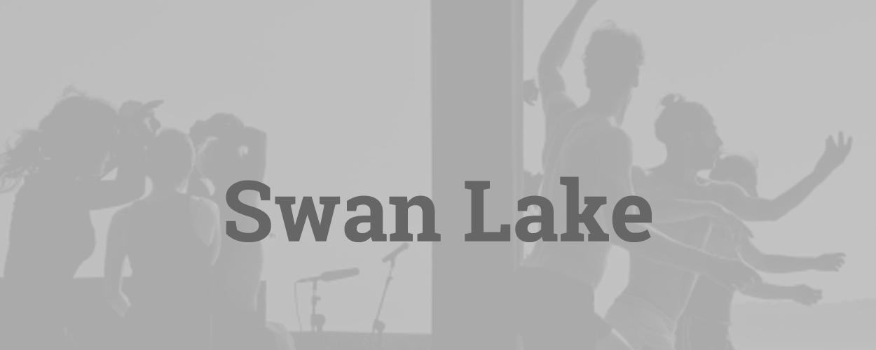 Swan Lake, gebaseerd op Het Zwanenmeer, opvolger van Horror