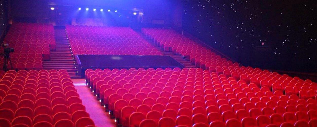 Theater Elckerlyc en De Proefkonijnen organiseren deze zomer musicalstages