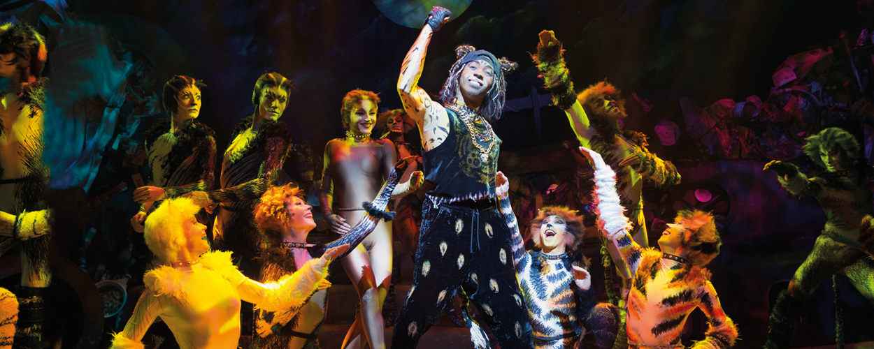 Cats in voorjaar 2019 te zien in Brussel