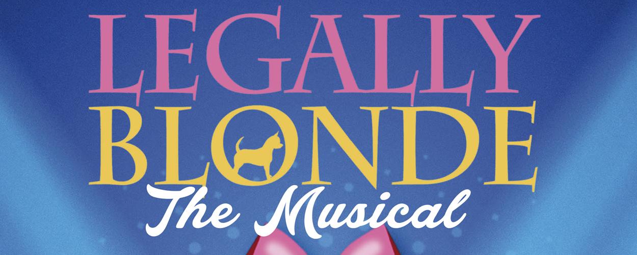 Audities: Legally Blonde van Muziek- en Dansschool Amstelveen