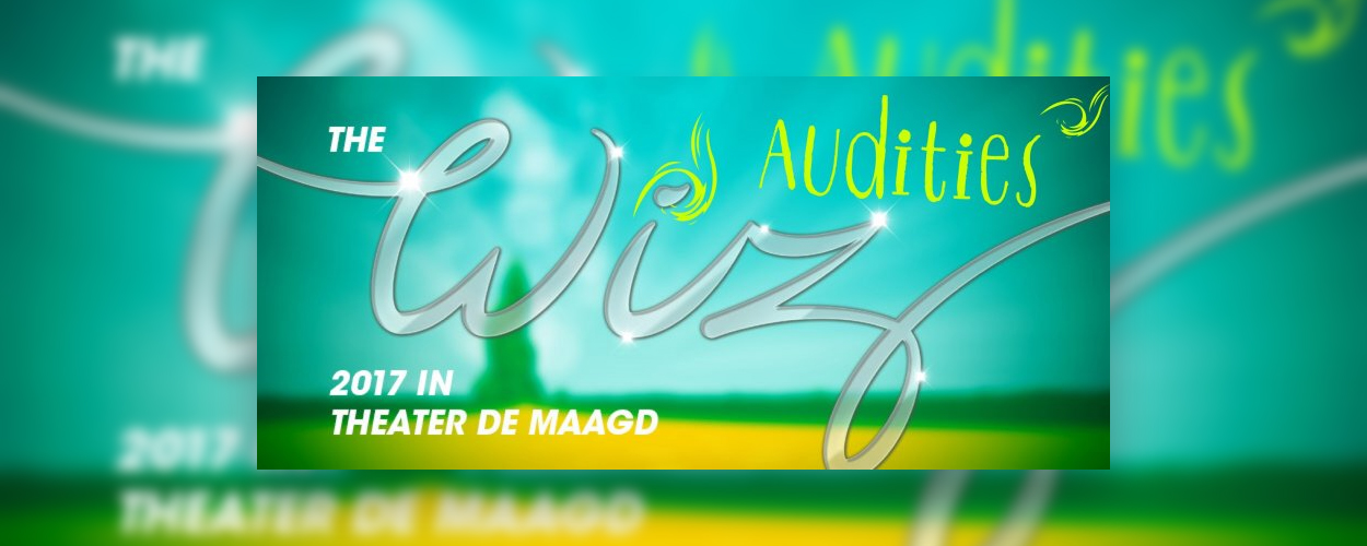 Audities: The Wiz van stichting BOV