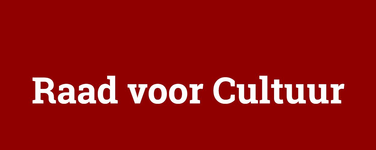 Erwin van Lambaart lid geworden van de Raad voor Cultuur