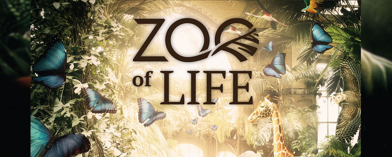 Audities: Professionals, studenten musical/theater voor ZOO of life