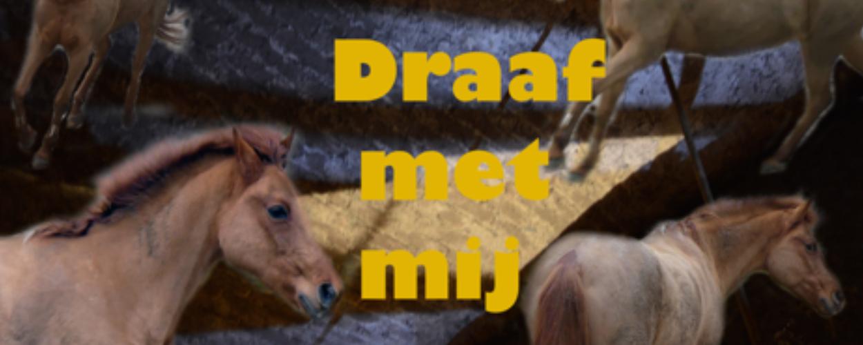 'Draaf met mij', een muzikale, avontuurlijke familievoorstelling in manege Laarwoud