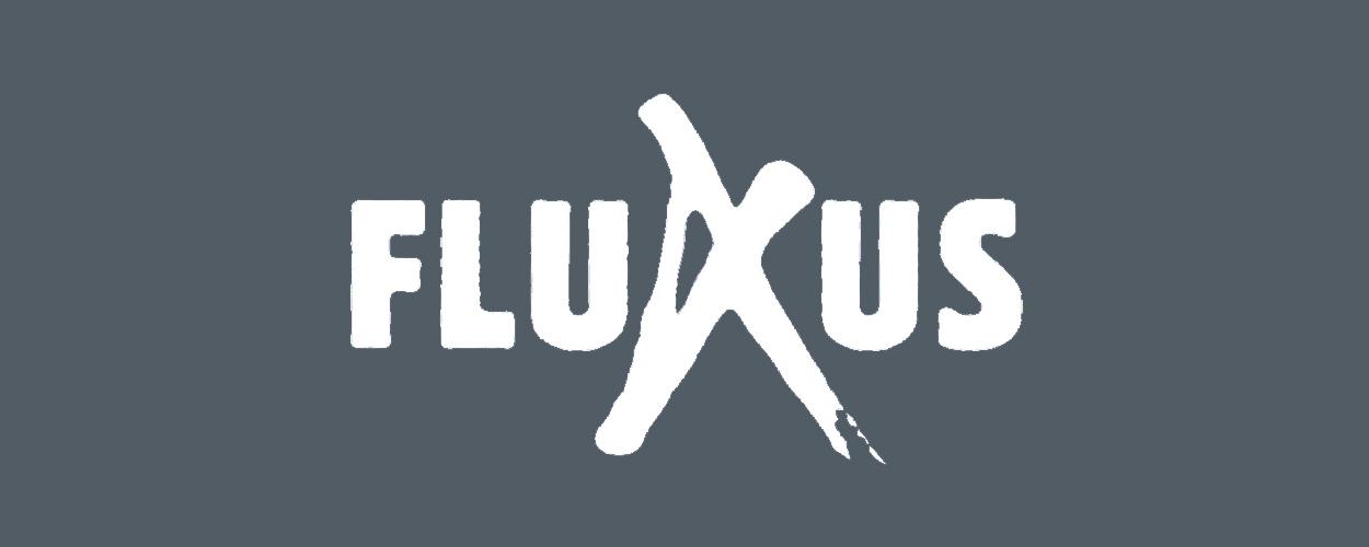 Audities: Het Geheim van de Zaanstreek van FluXus
