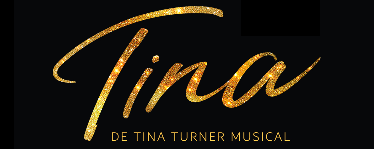 Audities: Jongens voor TINA – De Tina Turner Musical