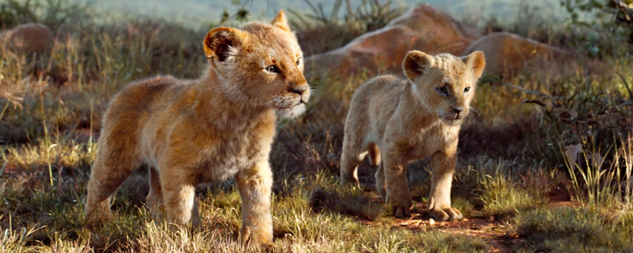 Nieuwe foto's van live-action The Lion King