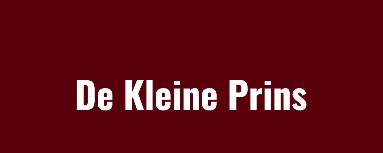 Audities: Nieuwe familiemusical De Kleine Prins