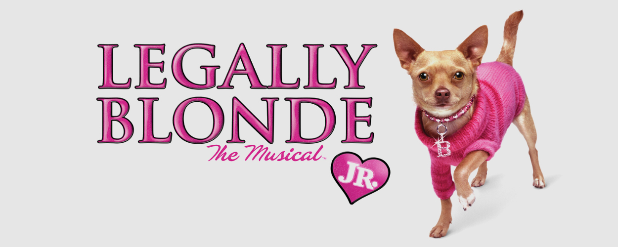 Auditieoproep: Legally Blonde van Musical 2.0