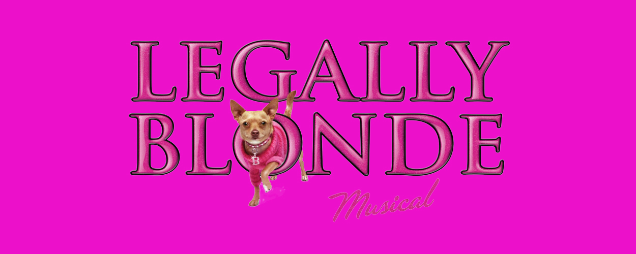Audities: Legally Blonde van Theatergroep Manteau