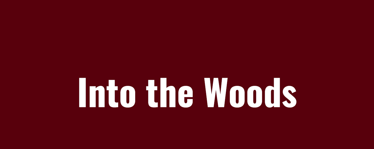 Into The Woods (2003)